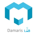 Les API de Damaris RM